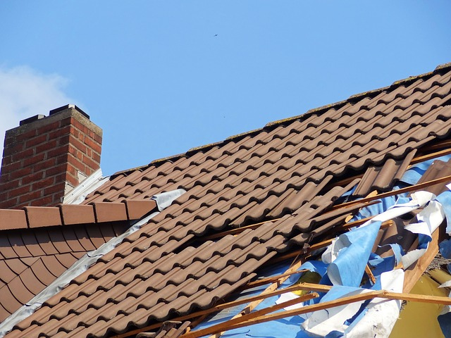 roof_restoration_repairs_cleaning_painting